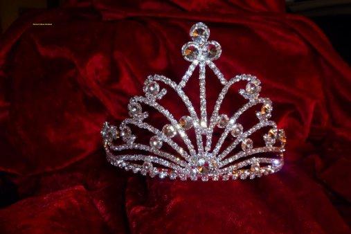 Election de Miss le samedi 15 janvier 2011