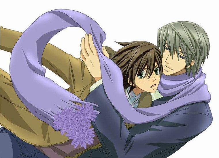 Ensuite Junjou Romantica (vient du même auteur que sekaiichi hatsukoi)
