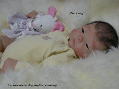 -- Mei Ling --