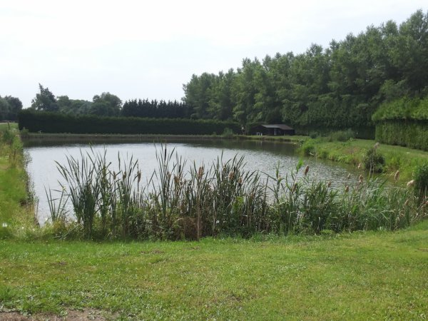 Places disponibles a l Etang de la Peupleraie