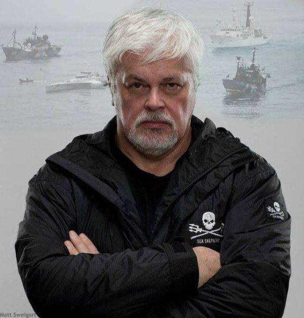 Sea Shepherd une ONG qui agit .