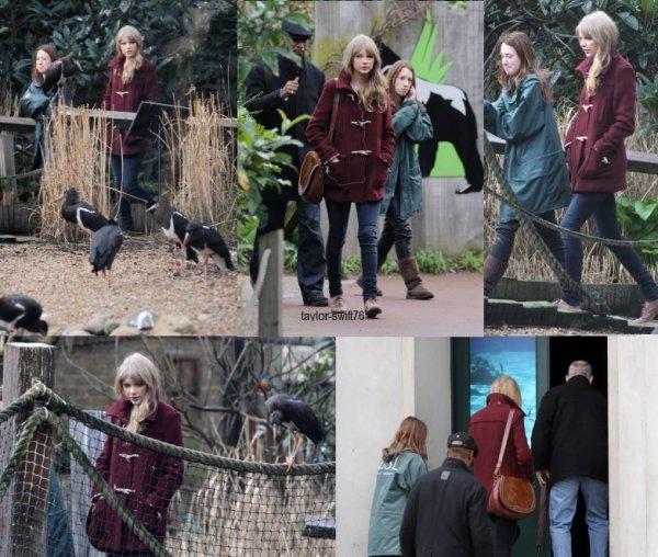 Taylor Swift au Zoo ღ