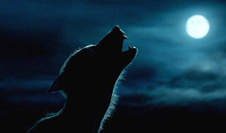 thème 14: La légende du Loup-Garou