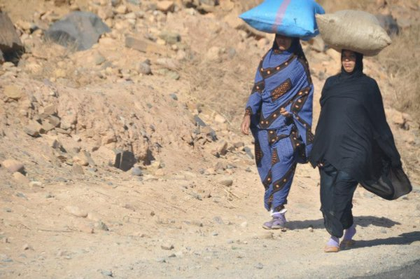 les amazigh