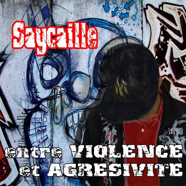 Entre Violence Et Agrésivité