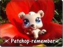 Photo de petshop-remember