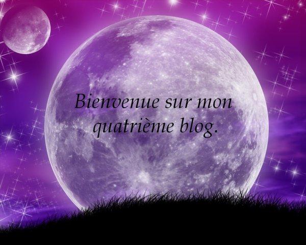 Bienvenue sur mon quatrième blog.
