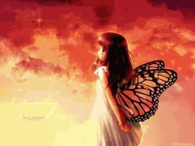 Les reves sont comme les papillons, des que tu les froles ils s'envolent