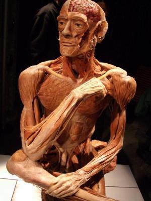 Complainte du pauvre corps humain - Jules Laforgue 1326297144_small