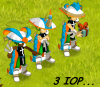 3 IOP !