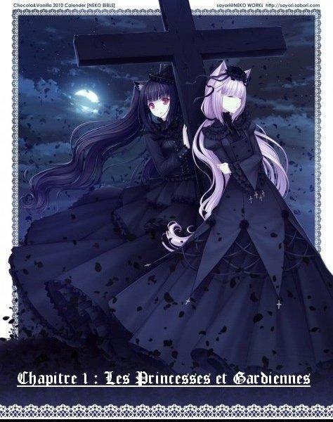 Chapitre 1 : Les Princesses et Gardiennes