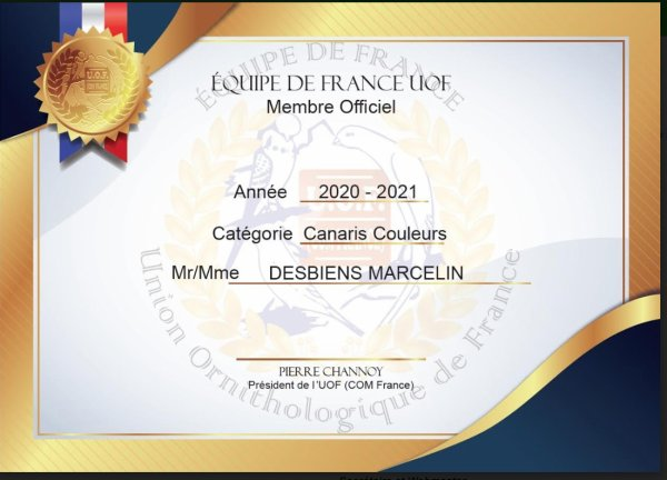 DIPLOME UOF 2020-2021