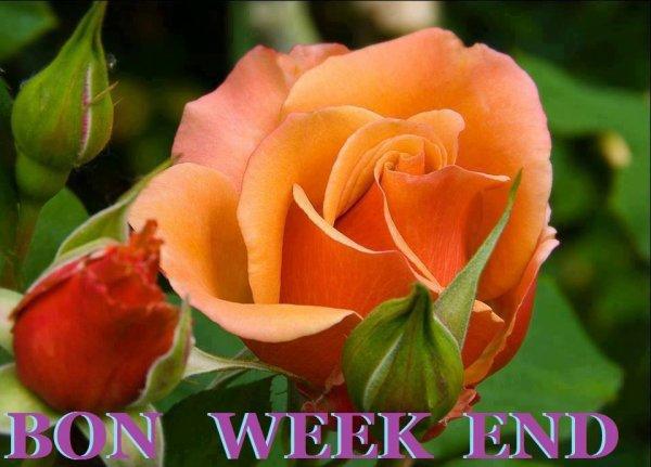 Très bon week-end à vous mes amis bisous