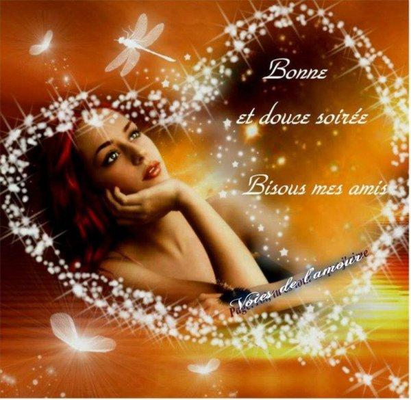 Bonne soirée et douce nuit bisous mes amis