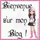 Bienvenue sur mon blog ;)