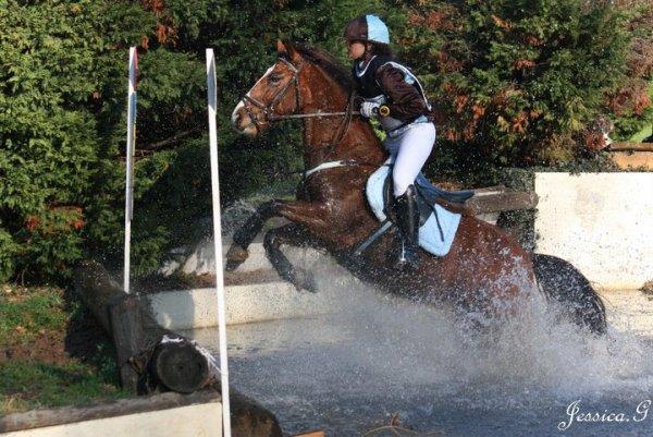 Isaie ( Zouzou ) ancien poney monté par Victoria.F