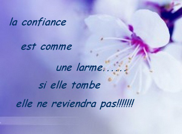 Belle phrase