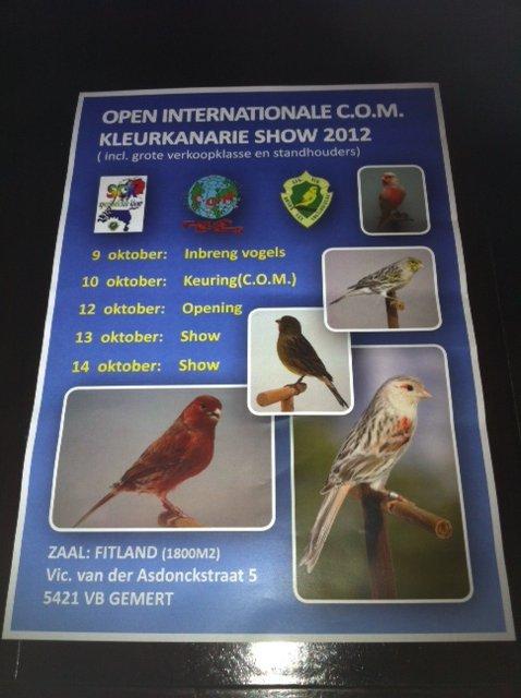 Un championnat COM pour canaris couleurs aux Pays Bas