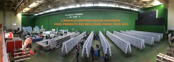 VOEUX DE L'AMICALE ORNITHOLOGIQUE GIRONDINE - BORDEAUX