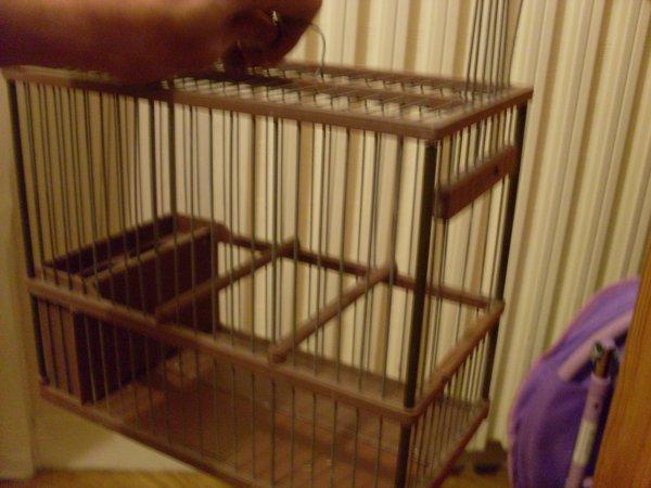 cage pour le chant