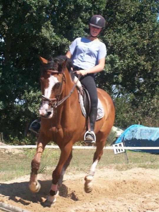 """~ Monter à cheval transforme le """"je voudrais bien"""" en """"je peux""""."""