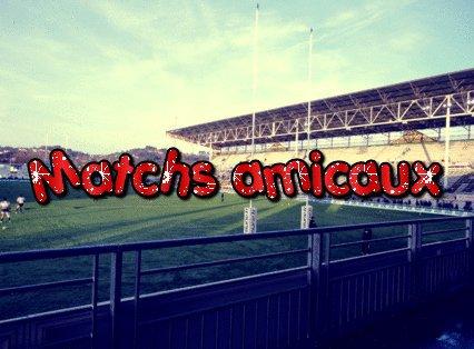 Matchs amicaux saison 2013/2014