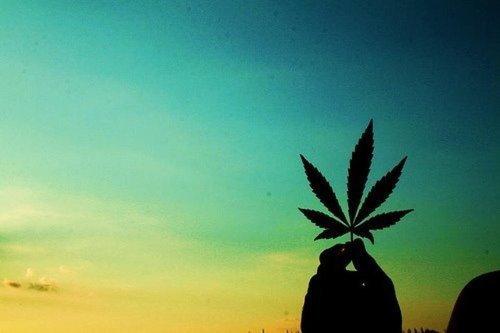 Smoke Weed <3