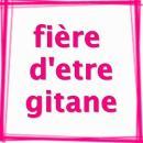 Photo de logo-gitan