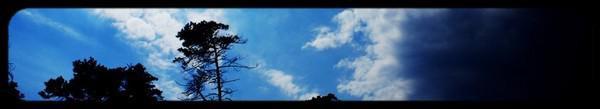 # # { Yiruma - River Flows in You ♪ } # #