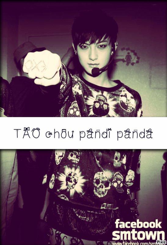 TAO CHOU PANDI PANDA