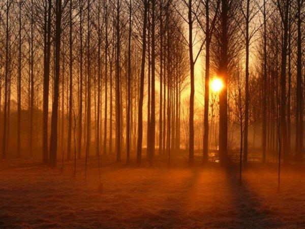 tu sais la lumière est un luxe dans le royaume des aveugles, et lui c'était simplement ta lumière..♥