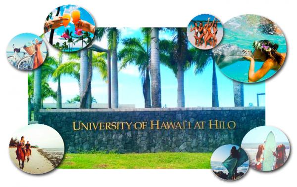 Bienvenue à Hilo University of Hawaii