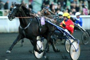 jeudi 19 février 2015 quinté de trot attelé a vincennes autostart 14 chevaux favoris ceci 14 5 3 4 11....