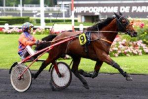 dimanche 22 février 2015 vincennes trot attelé 2700 mètres 17 chevaux cotes 15 11 10 4 17 9 3 16..