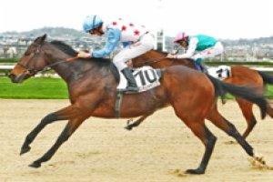 jeudi  12  mars  2015   chantilly  plat  16 chevaux mon choix 4 1 13 14 6... résultat 7 8 1 2 5
