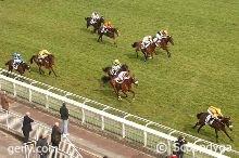 samedi 14 mars auteuil haies 3950 mètres 16 chevaux mon choix 2 7 3 10 12......arrivée 2 11 14 7 8