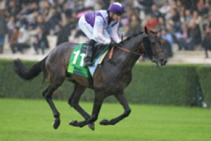 dimanche 15 mars 2015 - plat saint cloud 16 chevaux  résultat 9 13 11 15 1