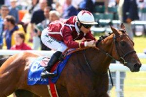 lundi 30 mars 2015 - chantilly plat 1600 mètres 17 chevaux résultat 4 5 8 14 1
