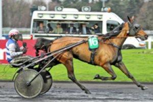 samedi  4  avril  2015   -   vincennes 18 chevaux trot attelé arrivée 5 11 4 13 10