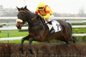 mardi 7 avril 2015 - enghien steeple chase 16 chevaux 3800 mètres/non partant le 14