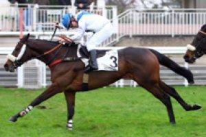 jeudi 30 avril 2015  auteuil  haies 4300 mètres 16 chevaux résultat 14 4 12 10 7