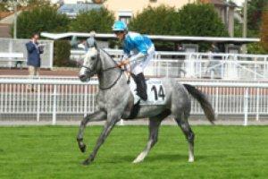 VENDREDI  1ER  MAI  2015 -  saint-cloud  2100 mètres  plat 16 chevaux 5 12 4 13 8