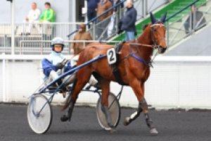 samedi 2 mai vincennes CRITERIUM DES 4 ANS  2800 mètres grande piste 15 chevaux résultat 13-8-7-15-11