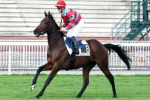 jeudi  14  mai 2015 lyon-parilly plat 1600 mètres 16 chevaux mon choix 6 14 2 3 13 15 10 5 7  arrivée 14 7 9 13 11
