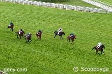 samedi 16 mai 2015 auteuil haies 4300 mètres 14 chevaux arrivée 10 7 8 5 12