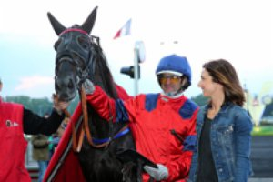 ce  vendredi 29 mai 2015 vincennes nocturne a 20 h25 avec 17 chevaux  résultat 17 4 6 14 11