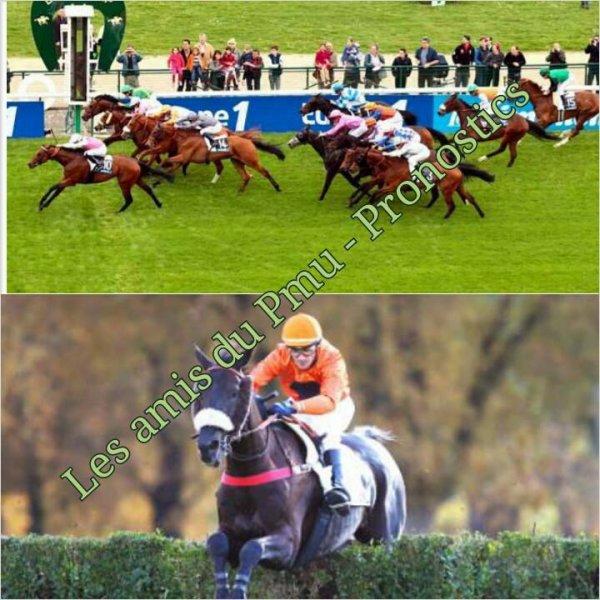 dimanche 31 mai 2015 chantilly plat 16 chevaux départ à 15h 45 - prix du jockey club 2015 résultat 1 6 3 14 13