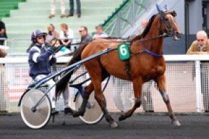 jeudi 4 juin 2015  vichy trot attelé 15 chevaux - prix vichy célestin 3525 mètres résultat 6 7 10 5 3