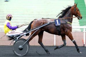 vendredi 5 juin 2015 vincennes prix r m c  titania 18 chevaux départ à 20h 25 arrivée 16 1 11  4 10
