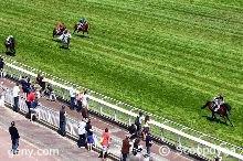 dimanche 7 juin auteuil haies 5100 mètres 15 chevaux arrivée 7 5 8 13 10
